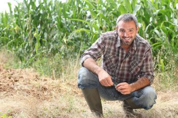 Soluções para Consultorias Agronômicas