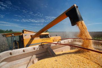 Soluções para Empresas Agrícolas