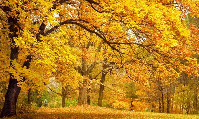 previsao-do-tempo-para-outono