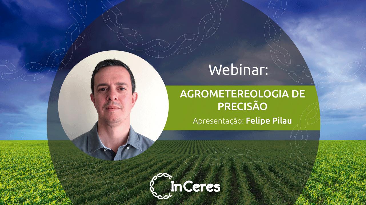 Agrometeorologia de Precisão: o uso do clima e do tempo na Agricultura de Precisão - Prof. Felipe Pilau (ESALQ/USP)