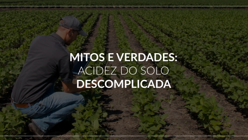 Mitos-e-verdades--acidez-do-solo-descomplicada